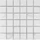 Мозаика Calacatta-48 белая матовая 306x306