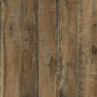 Керамический гранит COLISEUMGRES Гарда Вуд 450х450