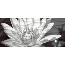 Декор CERSANIT Wave 440x200 Black Flowers цветы 1 WA2G441D