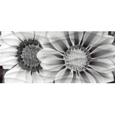 Декор CERSANIT Wave 440x200 Black Flowers цветы 3 WA2G443D